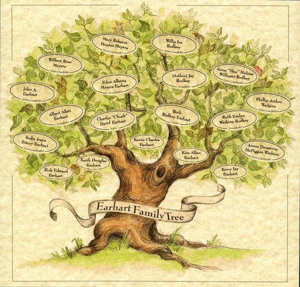 17 Best Images About Family Tree On Pinterest Trees