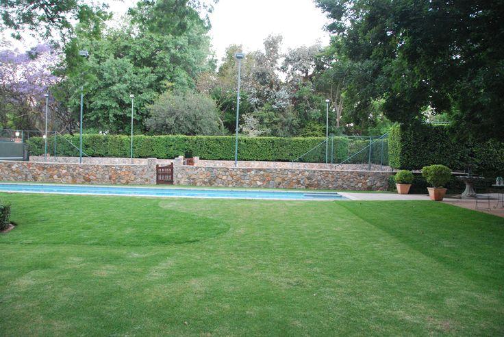 Grass Tennis Court In Backyard : Hedges and Tennis on Pinterest