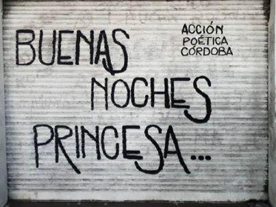 Accion Poetica Argentina