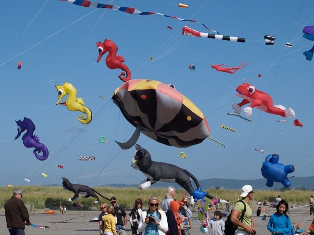 Cape Town International Kite Festival | November | Zandvlei Picnic Area | off The Row and Axminster Road Muizenberg