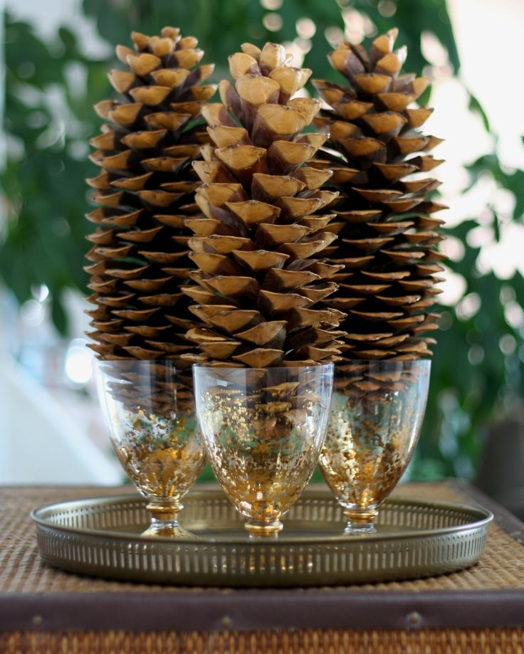 17 best images about sugar pine cone decorations on for Pine cone christmas ornaments crafts