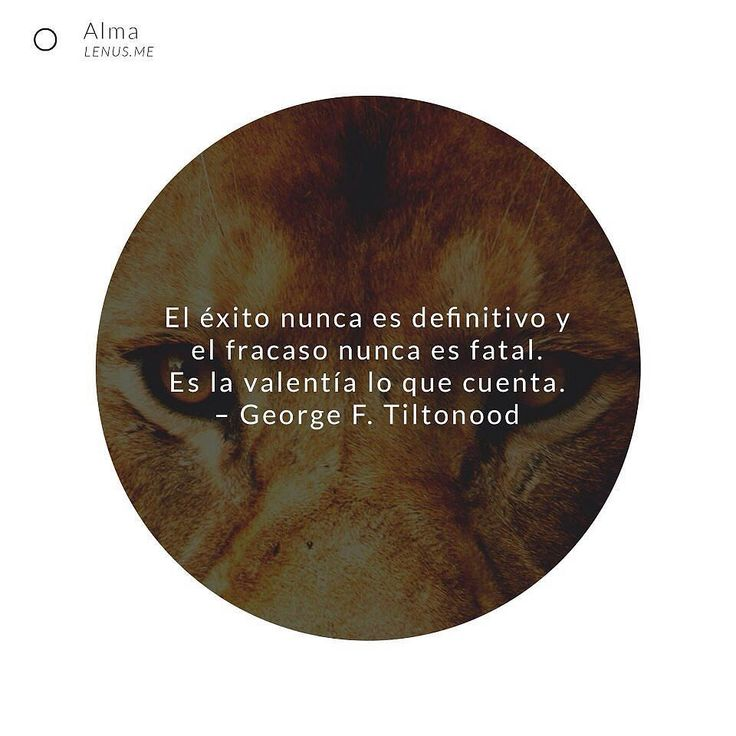 No hay razón para dejar de persistir. | #continua #emprender #motivado #continuar #persiste #lider #startup #vidaconproposito #motivar #sinparar #vamosallá #vida