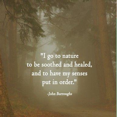 I go to nature... ~ John Burroughs