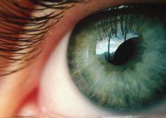 ¿Cuál es tu inteligencia visual? Este test te lo dice