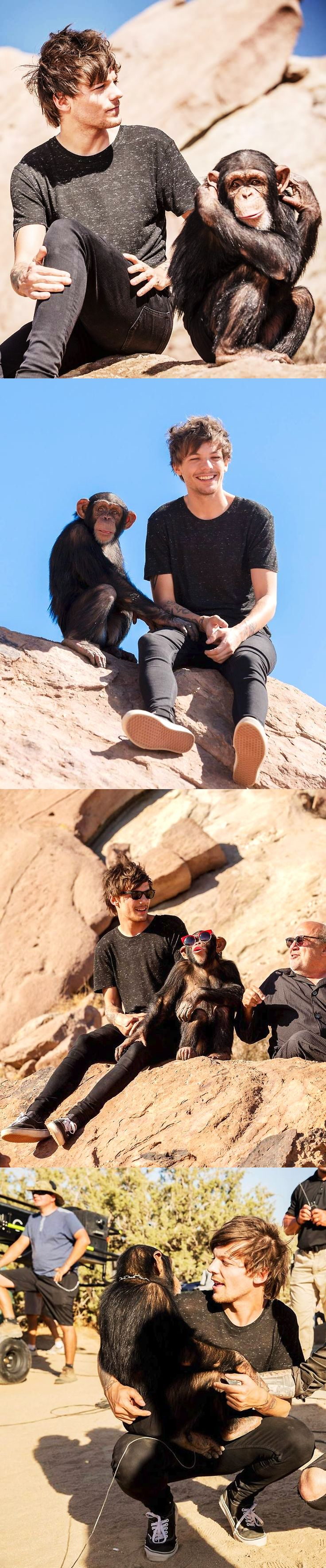 "Louis has more chemistry with eli the monkey then eleanour his ""girlfriend""- Deni Hernandez Xx"