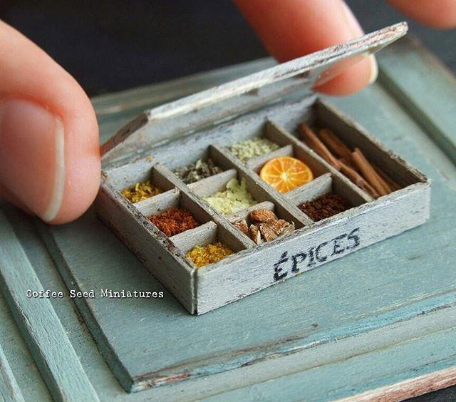 Coffee Seed Miniatures