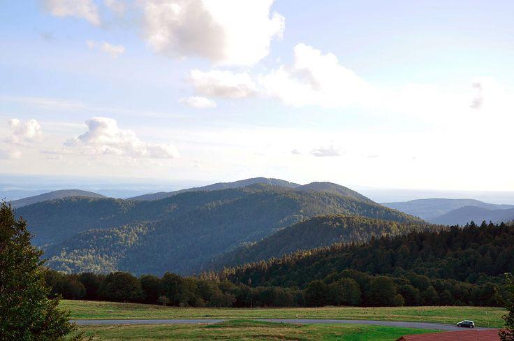 Ballon d'Alsace. Massif des Vosges. France