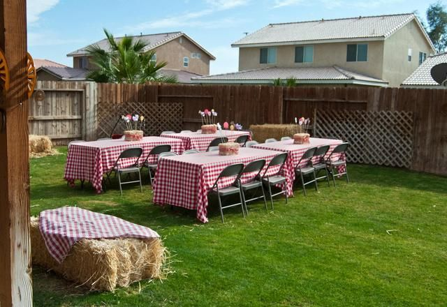 Barnyard Bash Birthday Party Ideas | Photo 1 of 40 | Catch My Party