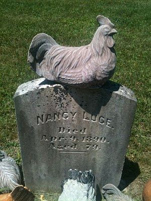 Nancy Luce~The Chicken Lady, I love this