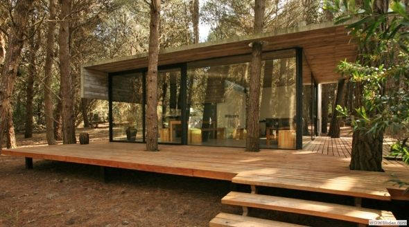 Casa de cristal en el bosque - Noticias de Arquitectura - Buscador de Arquitectura
