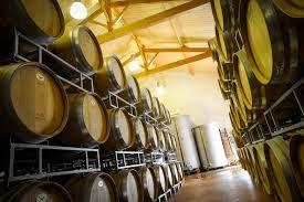 Venez visiter les chais du Château Franc Grâce-Dieu. Pour cela il vous suffit simplement de réserver votre visite sur Wine Tour Booking