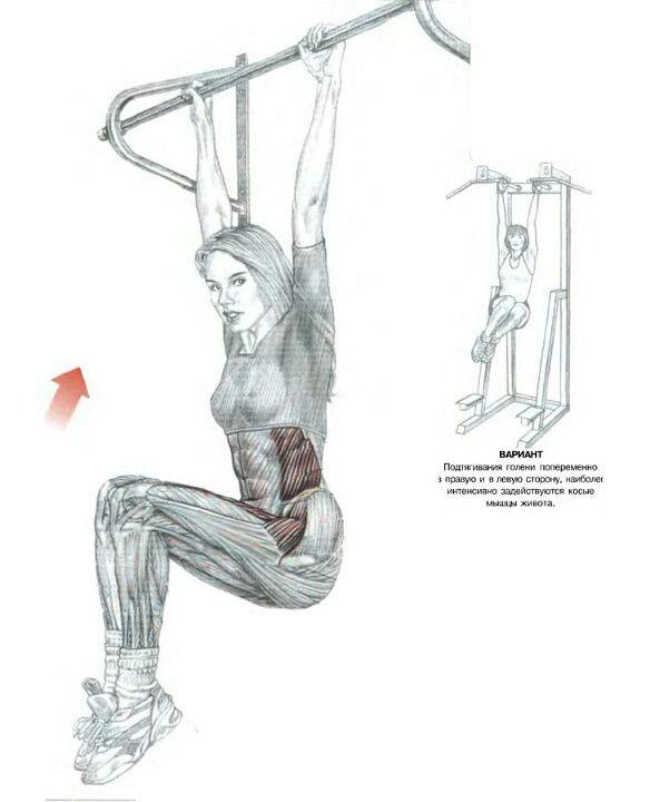 Подъём ног в висе на перекладине Основные мышцы - подвздошно поясничная Дополнительные - прямая мышца живота Сложность выполнения - средняя