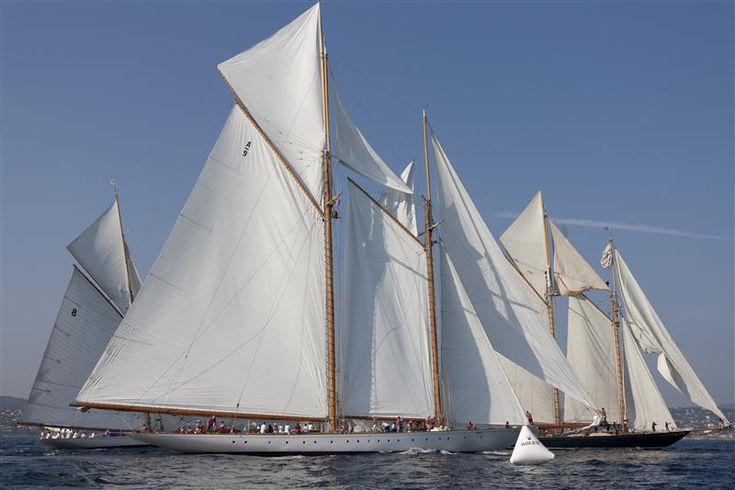 Voiles de St Tropez voiliers classiques