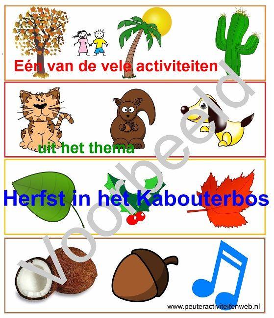 """Eén van de vele leuke activiteiten uit het thema """"Herfst in het Kabouterbos"""" Met oa 24 woordkaarten, sport-en spelactiviteiten, titels van boeken, speel-en oefenwerkjes......en nog veel meer waar de kinderen veel plezier uit beleven. De kleuren groen, geel, oranje, rood en bruin staan centraal. Ga je mee naar het kabouterbos? De kabouters wachten al op ons. Wat een feest! www.peuteractiviteitenweb.nl"""
