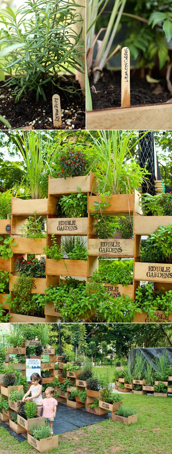 Who says you don't have any room for an herb garden. could make a gorgeous living wall/divider for privacy