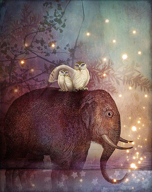 Catrin Welz-Stein  Riding through the night...love this!