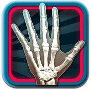 Take a Virtual Tour Inside Bones With This Free iPad App
