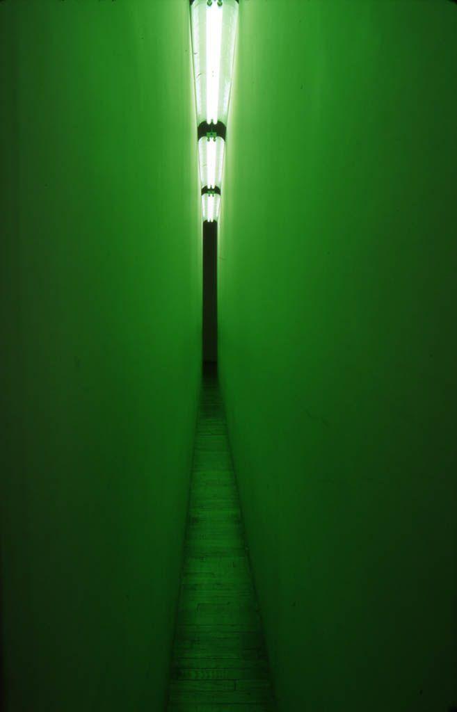 "Bruce Nauman, ""Green Light Corridor"""