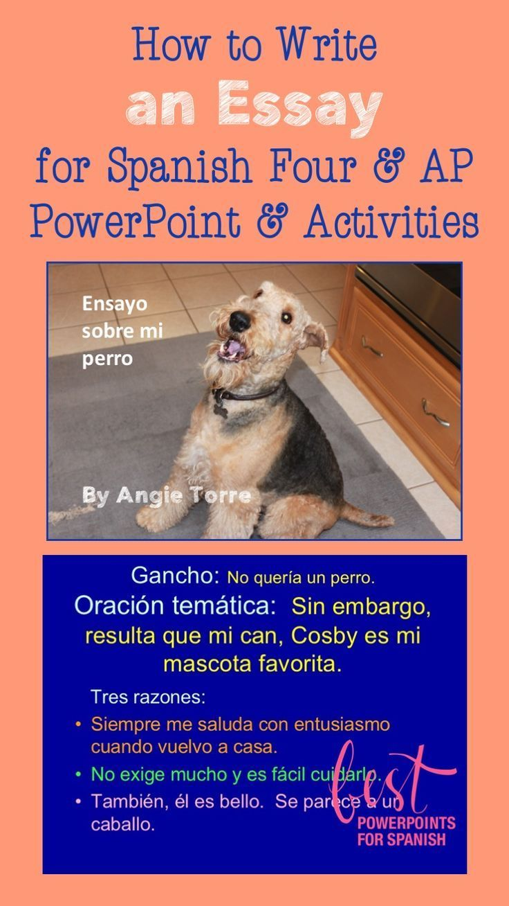 best images about best powerpoints for spanish and french by this 119 slide powerpoint is a complete step by step lesson on how to write an expository essay in spanish beginning the demonstration and practice of