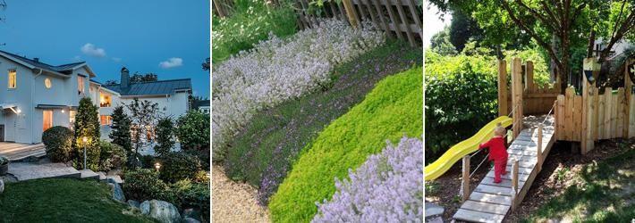 Har du en slänt i trädgården som du inte vet vad du ska göra med? Trädgårdsdesignern Cajsa Jacobsson har massor av förslag.