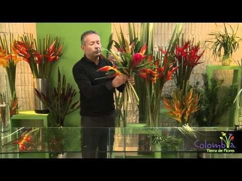 Ivan moreno florista - YouTube