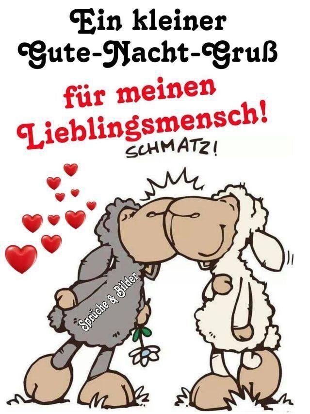Spruche Niedliche Tiere Niedliche Spruche Tiere Gute Nacht Lustig Zitate Zum Thema Liebe Gute Nacht