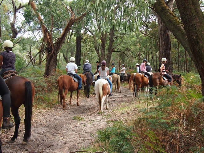 Melbourne WeekendNotes - School Holiday Activities on the Mornington Peninsula - Melbourne