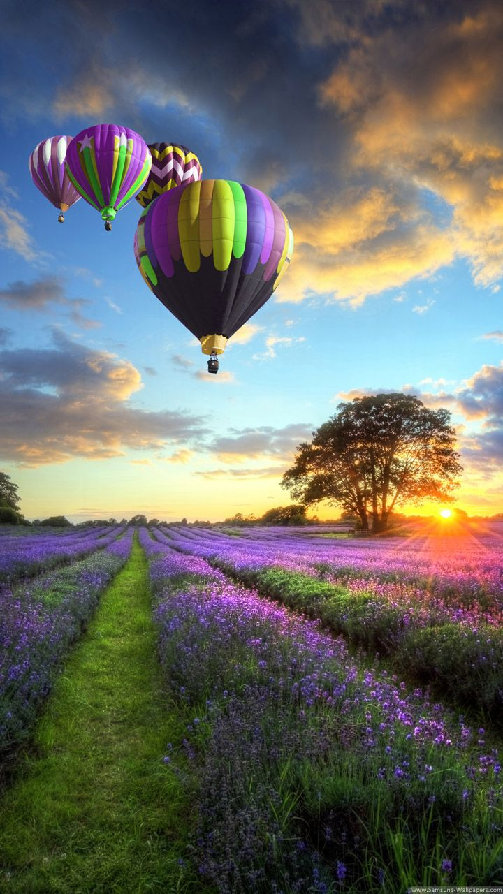 Hot Air Balloons In Provence France Iphone Wallpaper