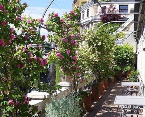 123 besten balconi Bilder auf Pinterest | Balkon, Inspirierend und Paar