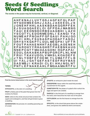 Fourth Grade Life Science Word Search Vocabulary Worksheets: Seeds & Seedlings Word Search