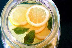 Champú casero de limón y romero para el cabello graso – Plantas Para Curar – Propiedades y usos de las plantas medicinales