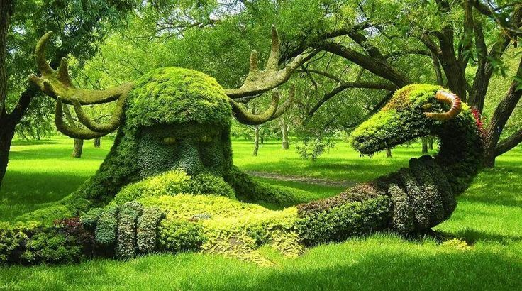 Beautiful Topiary Garden!!! Bebe'!!! Love topiaries!!!