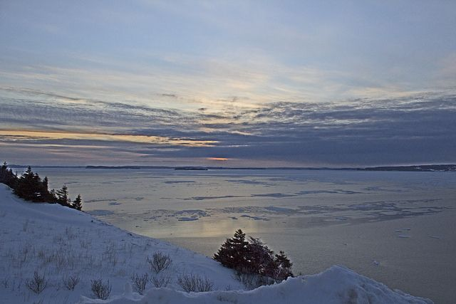 Conception Bay Ice, Newfoundland | Flickr - Photo Sharing!