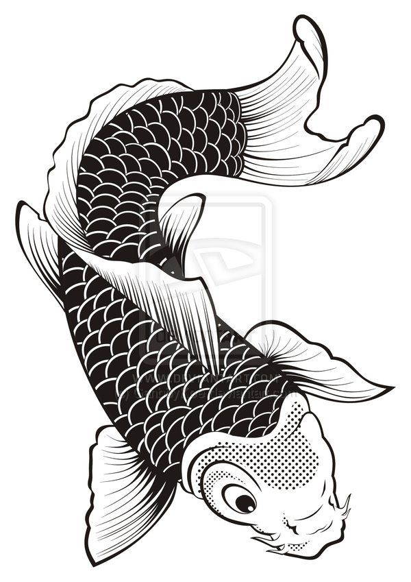 556 best images about design fish sea animals on for Koi fish vector