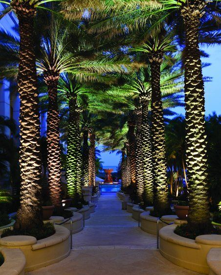 Loews Miami Beach Resort in Miami Beach, FL.  Path to the beach.  Just beautiful.