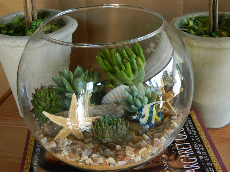 Succulent Terrarium - Succulent Tabletop, Wedding Centerpiece, Special Events Centerpiece, Succulent Planter. $35.00, via Etsy.