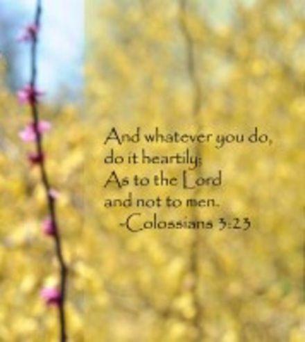 Kolossenzen 3:23