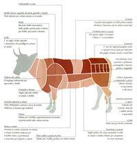 Tagli di carne bovino