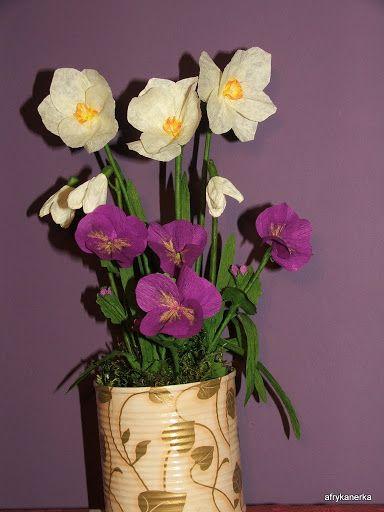 Narcyzy, przebiśniegi i bratki z bibuły Narcissus crepe