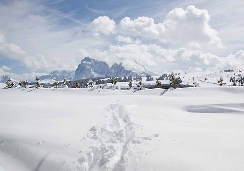 Fall Winter 2014/2015 Alpe di Siusi
