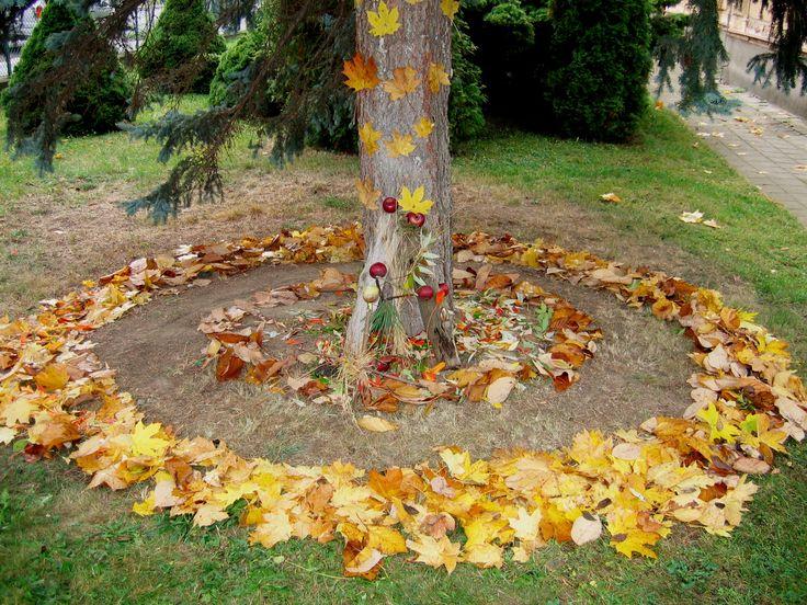 LAND ART Z LISTÍ, 7. ročník, 9/2008