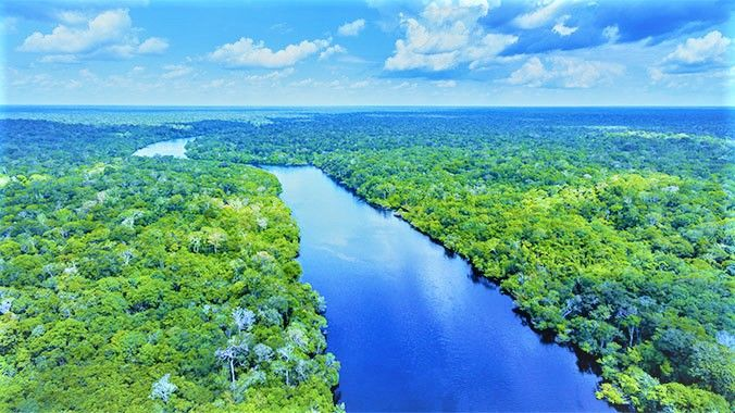 The Amazon Rainforest Is Located In South America And Covers 2 1