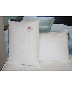 outlast cooling pillow pair