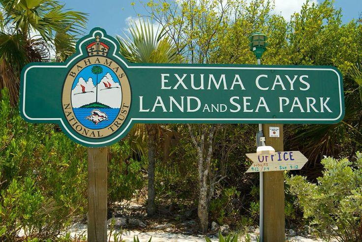 Explore The Beauty Of Caribbean: 55 Best Bahamas Scuba Diving Adventure In The Exumas