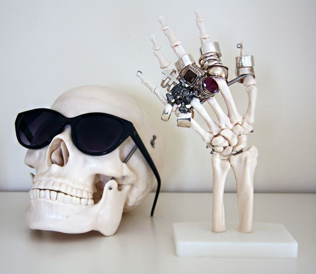 Anatomical Jewelry Display cool and for your sunglasses who ever thought of this (high five) on ur part