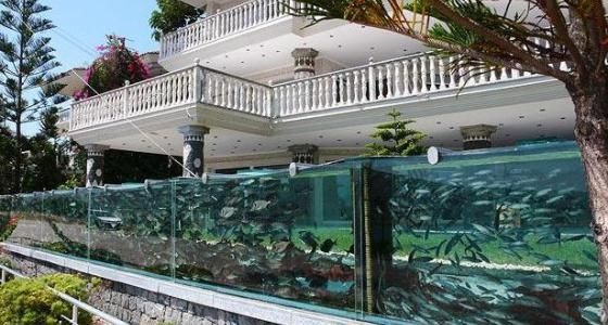 aquarium-wall-house