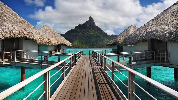Best 25+ Resorts in bora bora ideas on Pinterest | Bora ...