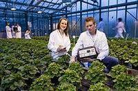 Agrar- und Lebensmittelwirtschaft (M.Sc.)  Hochschule Osnabrück Wir bieten Ihnen einen anwendungsorientierten Masterstudiengang, der Sie für Führungspositionen auf allen Stufen der Agrar- und Lebensmittelwirtschaft qualifiziert. Durch die Wahl eines von sieben Profilen eignen Sie sich Spezialwissen an und wenden dieses in angewandten Drittmittelforschungsprojekten oder Entwicklungsprojekten mit einem unserer Praxiskooperationspartner an.