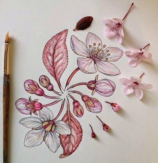 Creative Sketchbook: The Striking Beauty of Nature by Noel Badges Pugh www.creativeskethcbook.co.uk