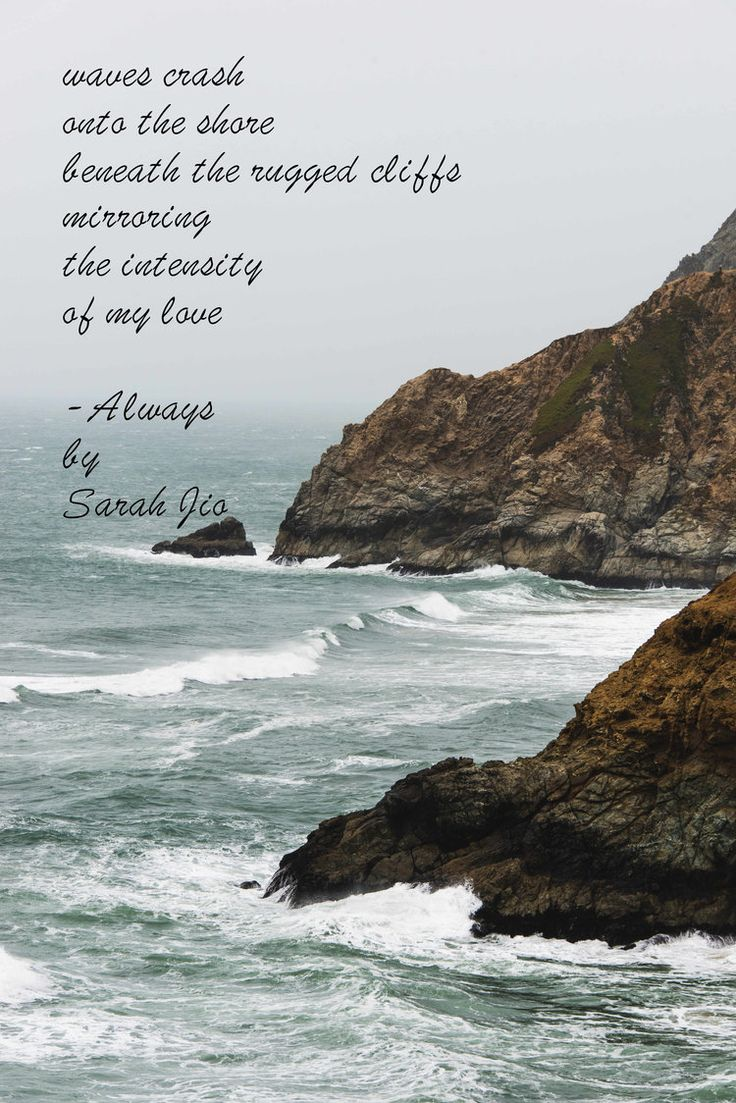 Always By Sarah Jio  Amanda Elle Wild Book Review